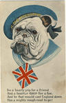 BULLDOG in war